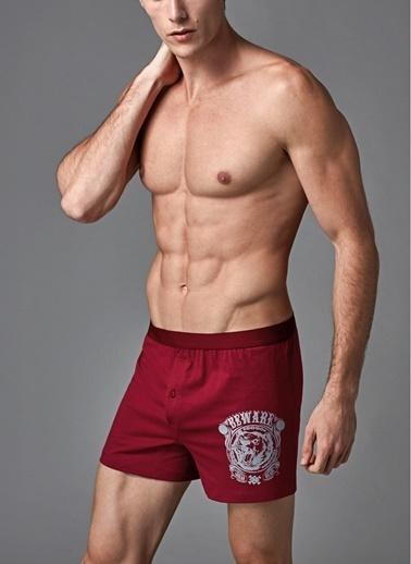 Eros Boxer Bordo
